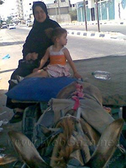 """This is me and Amira on a donkey cart going home from work to the refugee camp. It's a long way so it costs us ten shekels and takes an hour and a half. We can't afford a taxi or a car to take us home. It takes a long time to travel this way"""