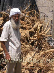 Abu Meri (father of Meri) is about 52 years old – he doesn't know his exact age. He lives in a town in the middle of the Gaza Strip, with his wife, his mother, four sons and four daughters